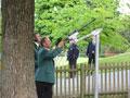 Vogelschießen in Herbram (Bild 7042)