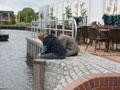 Vereinsausflug nach Papenburg (Bild 7671)