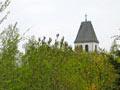 Vogelschießen in Herbram (Bild 8162)