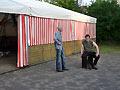 Kameradschaftsfest in Iggenhausen (Bild 8890)