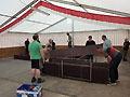 Kameradschaftsfest in Iggenhausen (Bild 8895)
