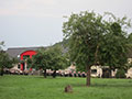 Schützenfest in Etteln (Bild 12484)